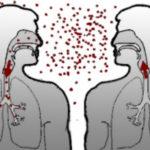 Заразна ли ангина для окружающих, какая ангина самая заразная