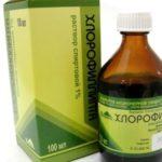 Можно ли применять хлорофиллипт при ангине у взрослых и детей