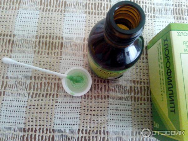 хлорофиллипт масляный раствор